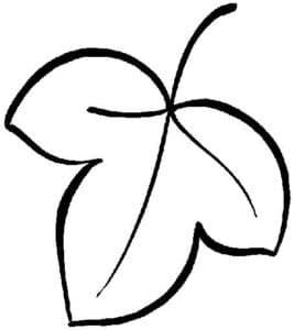 лист с тремя углами