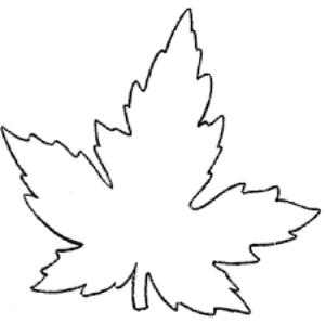 листик клена