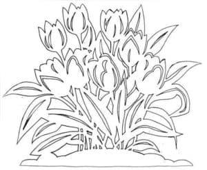тюльпаны трафарет для окна