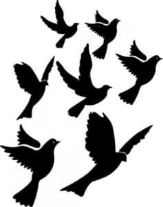 голуби летят трафарет
