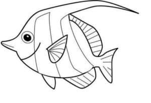 красивая рыбка раскраска-трафарет