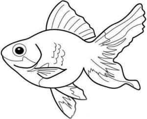 большая рыба трафарет