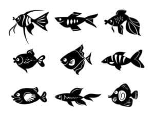 трафарет рыбы