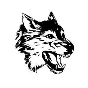 волк с зубами трафарет
