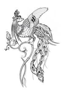 красивая жар птица