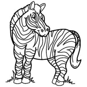 Зебра антистресс
