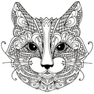 морда кота антистресс