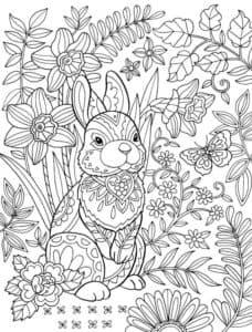 зайчик и цветы антистресс