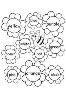 ромашки раскраска детская с цветами