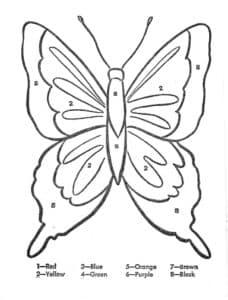 бабочка раскраска с цветами на английском