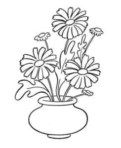красивые цветки в вазе