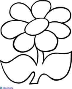 цветок раскраска для малыша