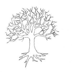 лысое дерево