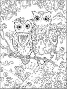 Две совы раскраска антистресс