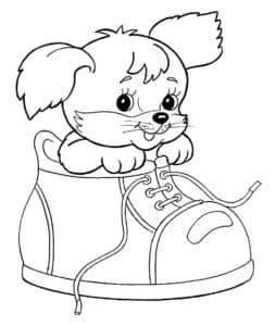 Собачка в ботинке