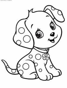 собачка долматинец