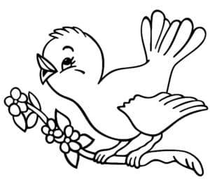 птичка на ветке поет раскраска