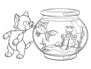 кот и аквариум с рыбкой