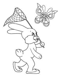 зайчик ловит бабочку сачком