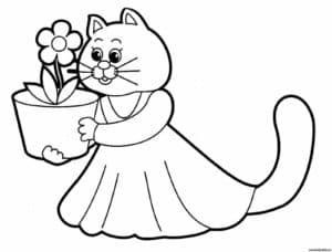 котенок в платье с цветком