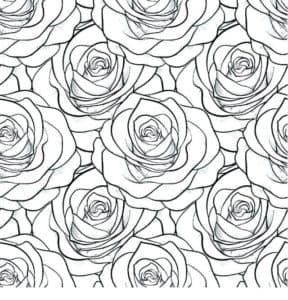 розы раскраска детская