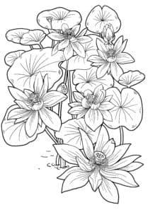 цветы раскраска детская