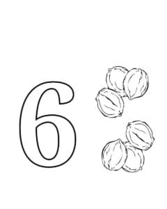 шесть орехов