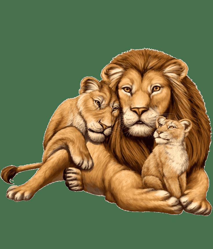 Раскраска Животные и их детеныши