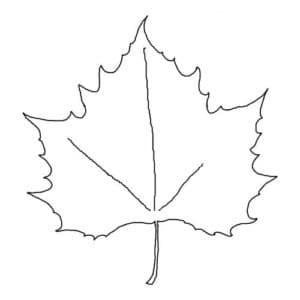 кленовый лист с узорами