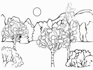 красивые деревья раскраска для детей