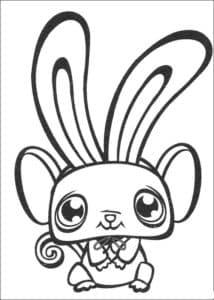 питомец с большими ушами