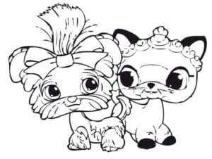 собачка и котик