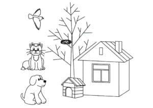 животные и будка