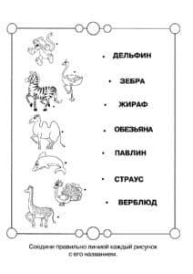 соедини название с животным