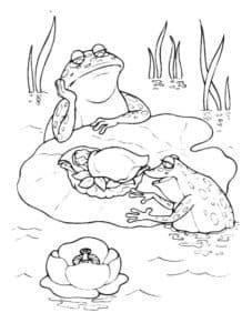 лягушки в воде
