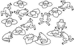 лягушки и лилии