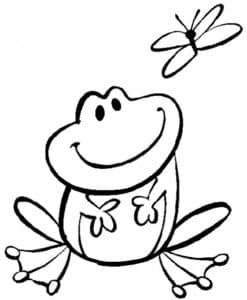 лягушка и бабочка
