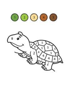 черепаха раскраска по номерам