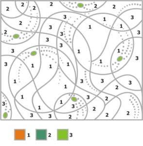 раскраска с номерами по точкам
