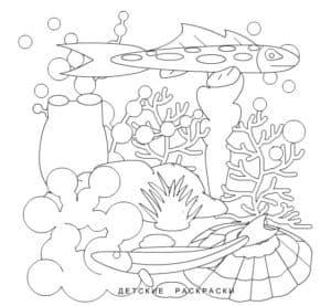 детская раскраска водоросли и рыбы