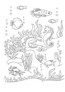подводный мир детская раскраска