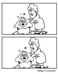 женщина моет собачку