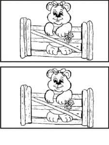 медведь и забор найди отличия