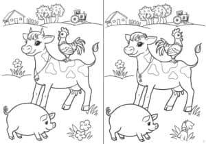 теленок петух и свинья отличия