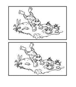 ляшки в луже