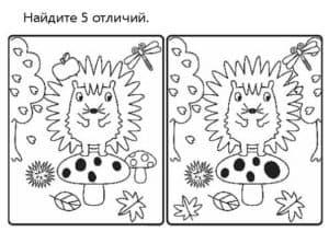 лев найди отличия
