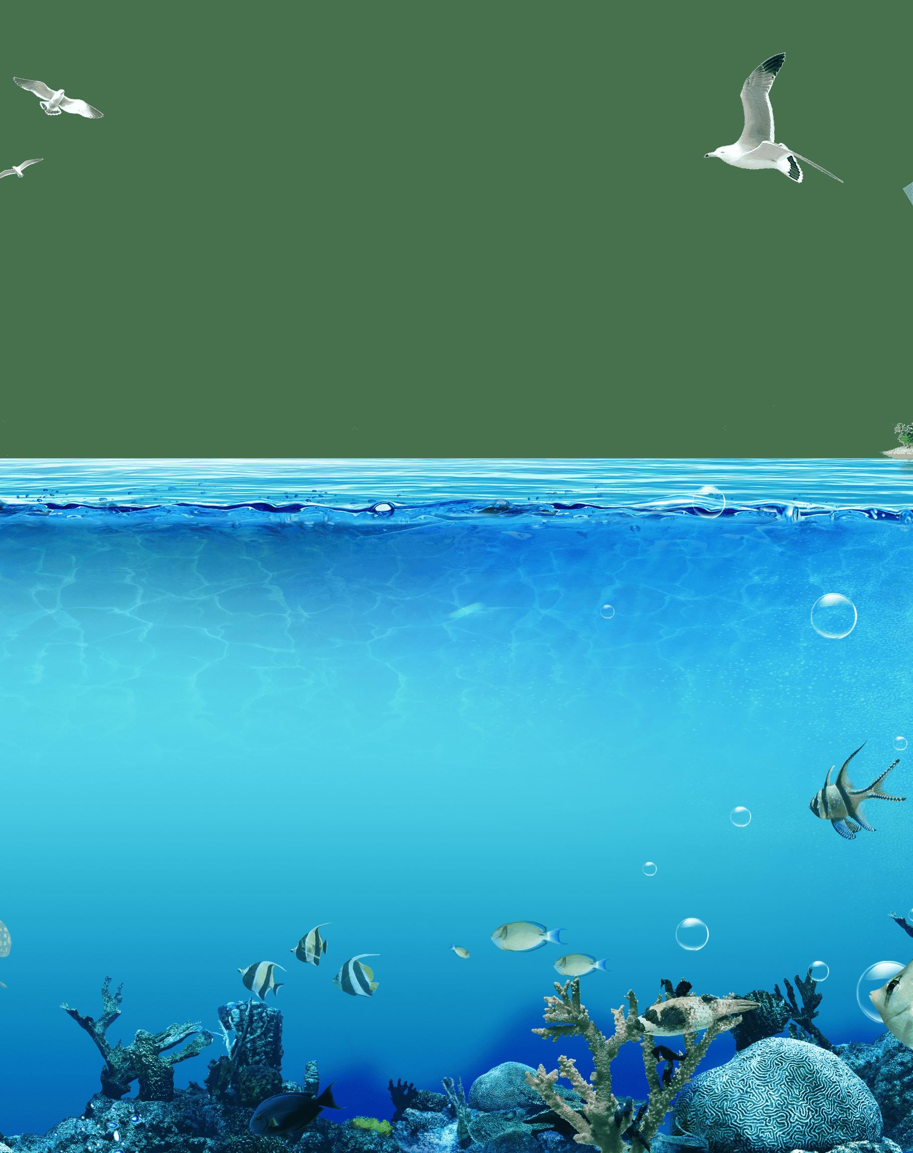 Раскраска Подводный мир