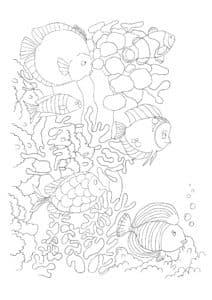 Рыбы антистресс