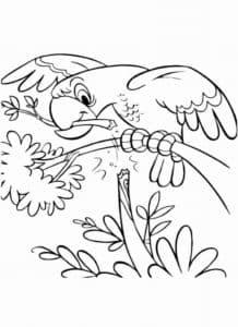 попугай с веткой в клюве