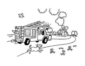 пожарная машина и собака